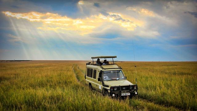 アフリカ旅行における持ち物の準備のポイント